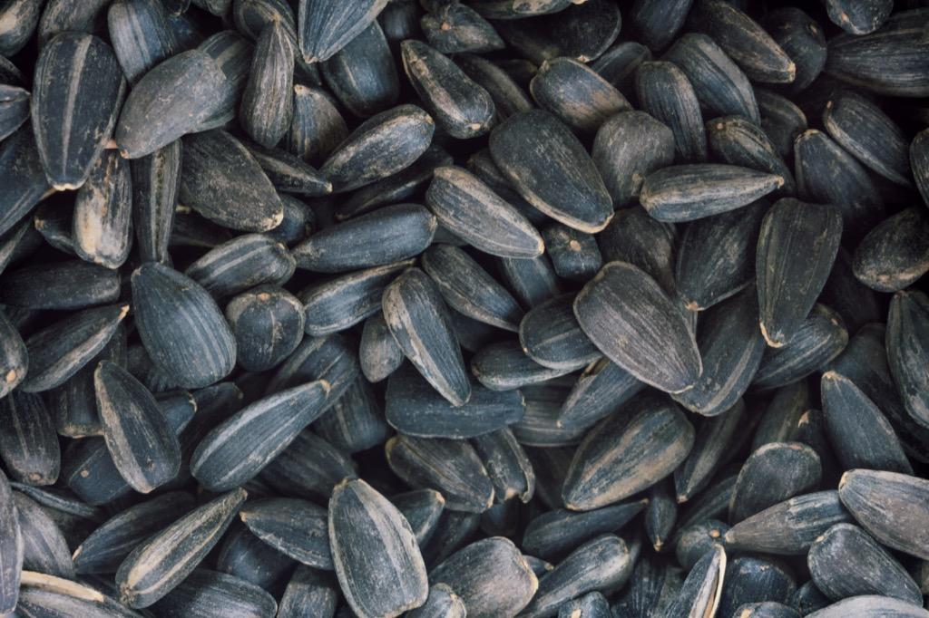 sunflower seeds, best brain foods