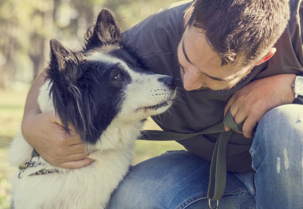 adopt a pet to ween of addiction