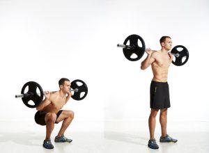 Squat, muscle