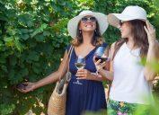Friend date, friendship, female friendships, red wines