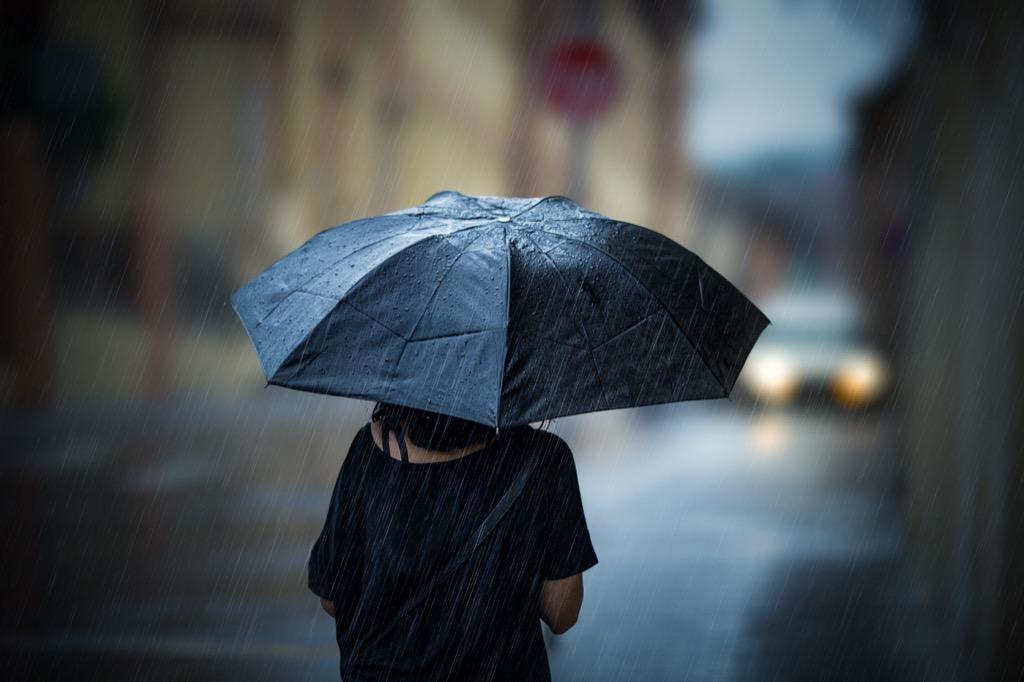 Umbrella, scandalous spring