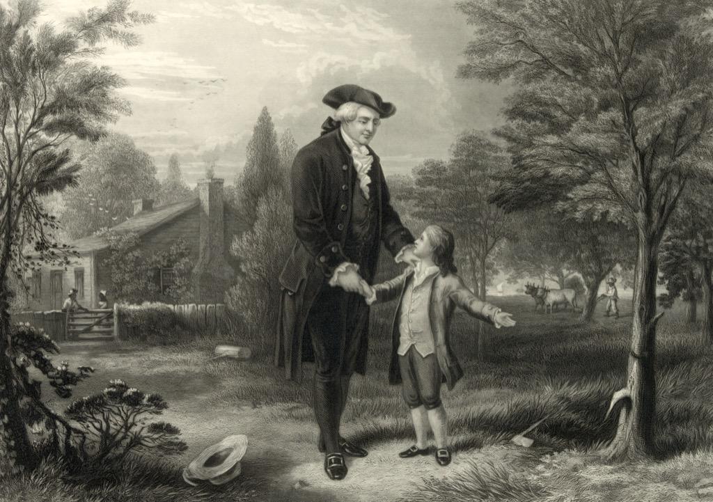 George Washington and the cherry tree