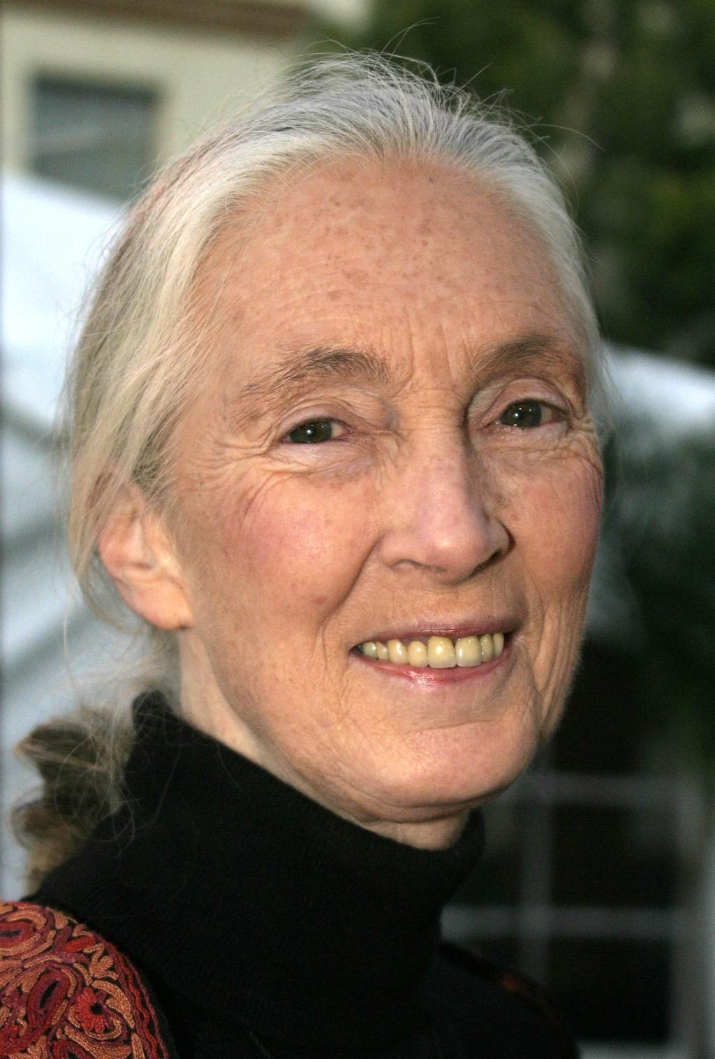 Jane Goodall, inspiring quotes