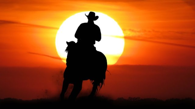 Cowboy in the Old West