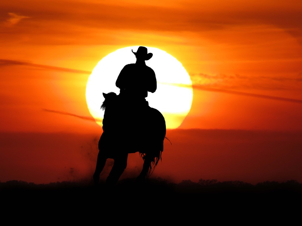 Cowboy on horse in shadow against a sunset