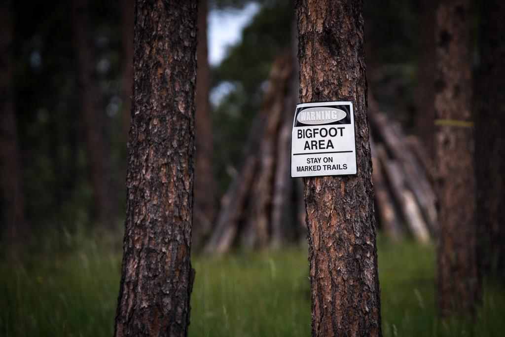 bigfoot sighting History's Greatest Mysteries