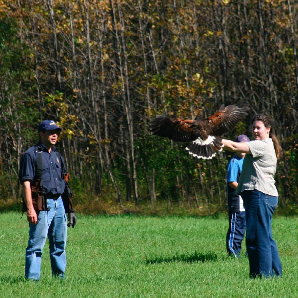 falconer gifts