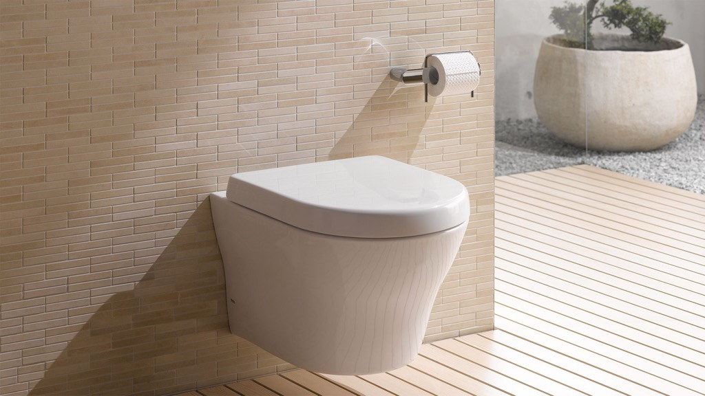 Japanese toilet, unusual gift