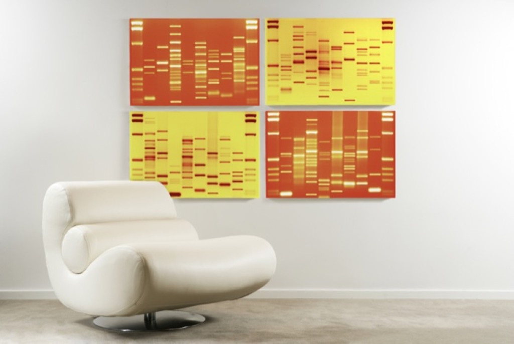 dna art, unusual gifts