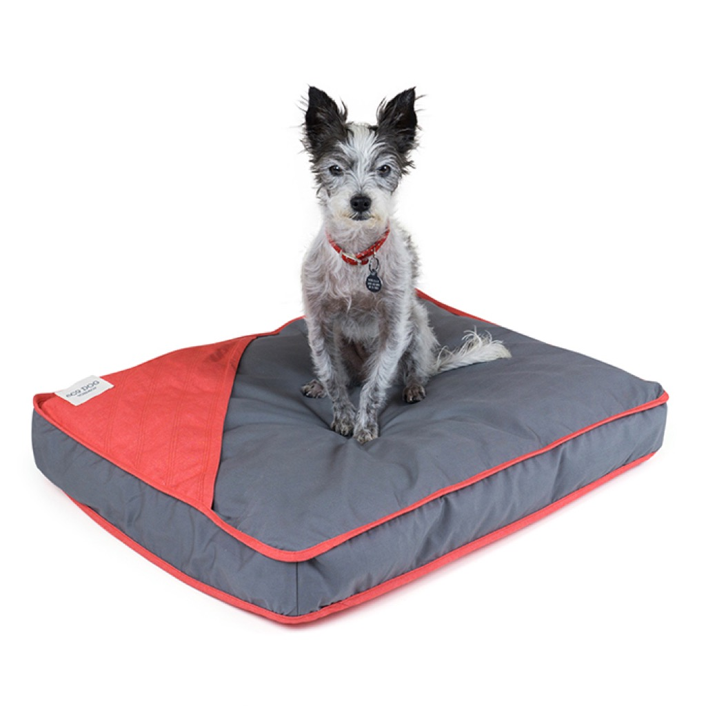 dog bed gift ideas