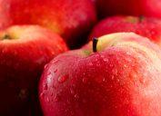 glistening apple