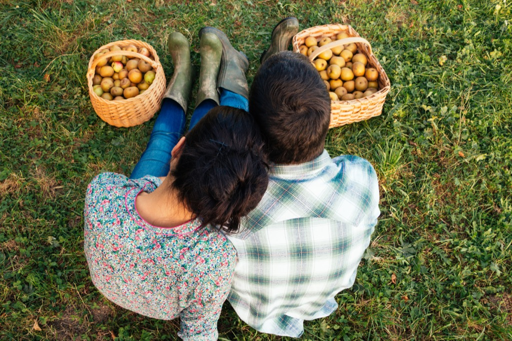 Apple picking, a great non-cliché second date. second date ideas