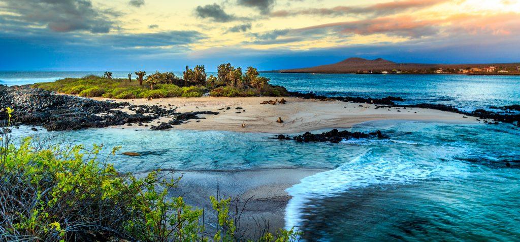 galapagos islands unusual gifts