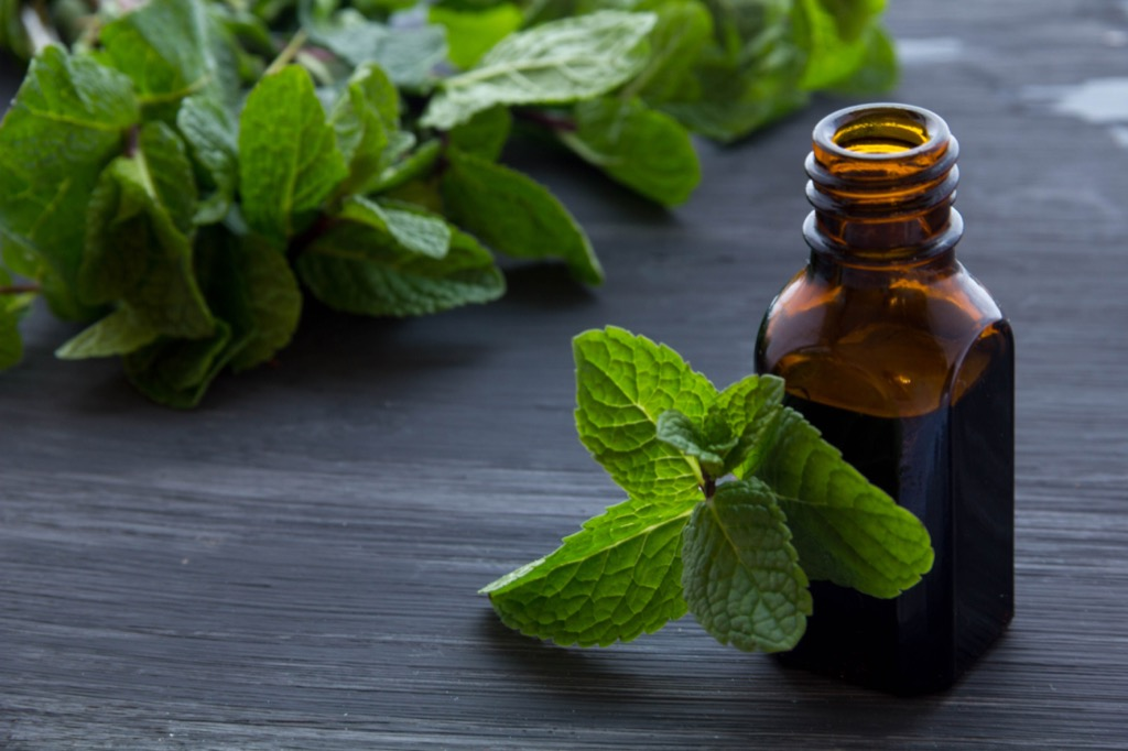 peppermint oil, controlling cravings