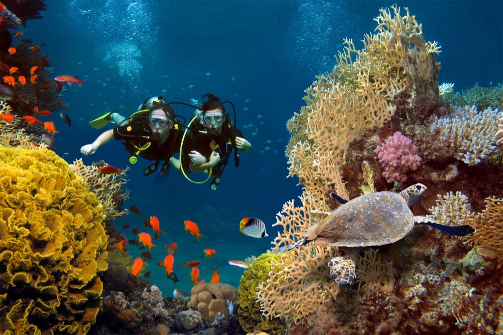 scuba diving hobbies