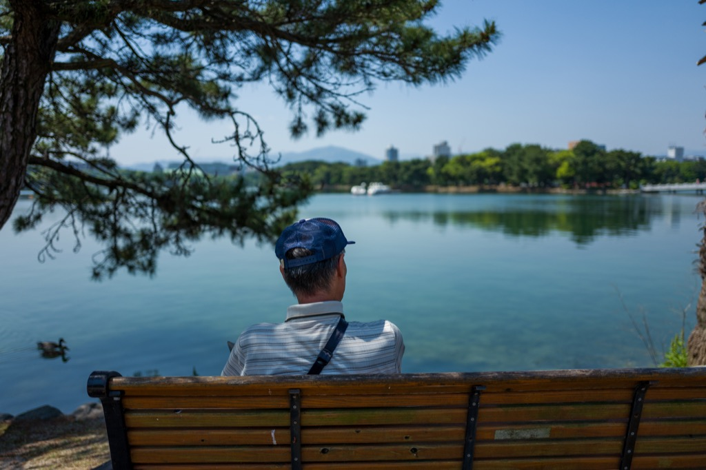 senior man sitting alone on bench, photographed from behind, looking at lake