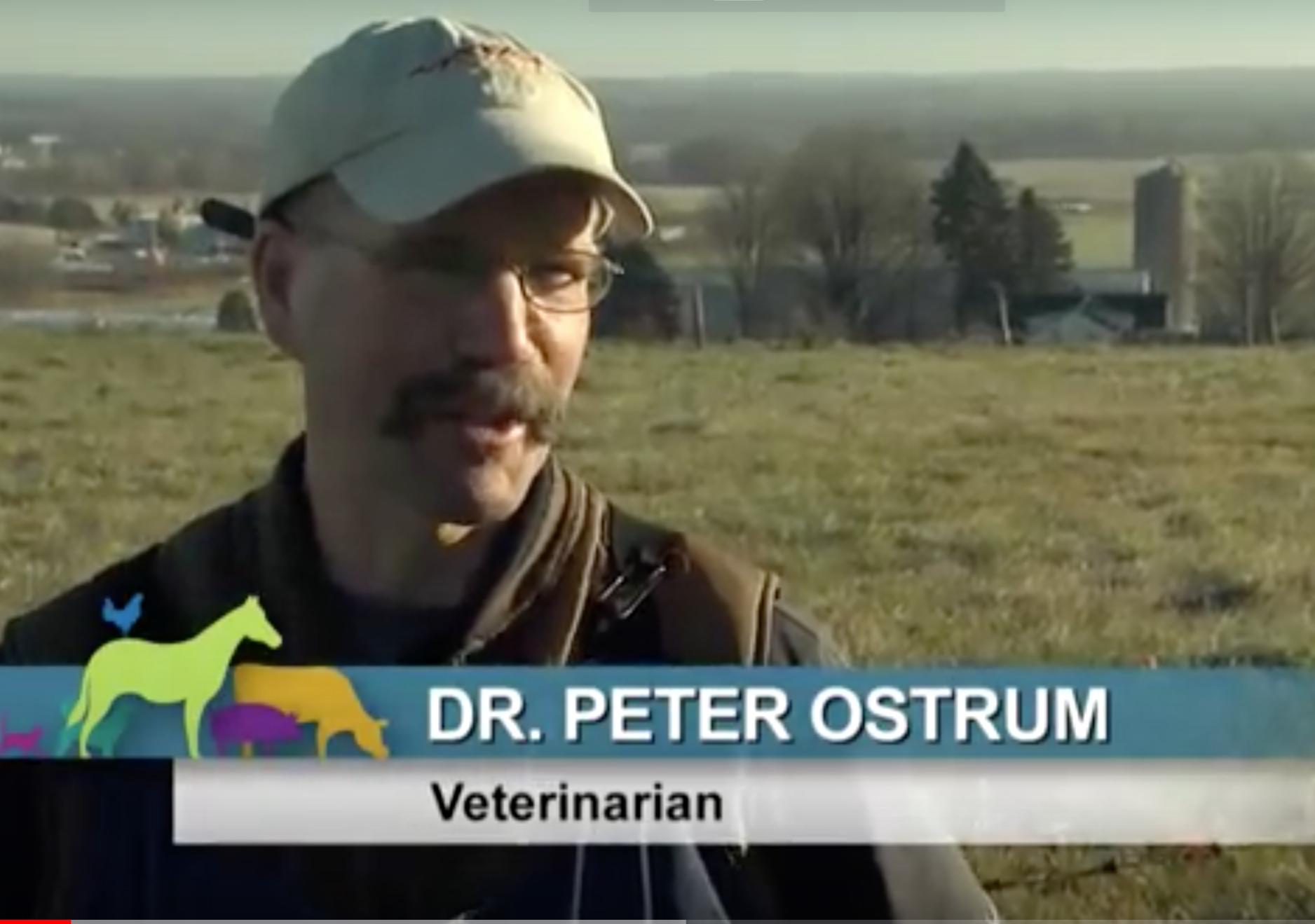 Peter Ostrum celebrities with normal jobs