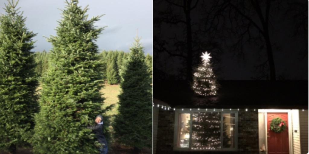 Christmas tree shooting through roof