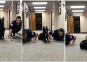 Nitro, a K9 at the Gulf Shores Police Department, does pushups in a viral video.