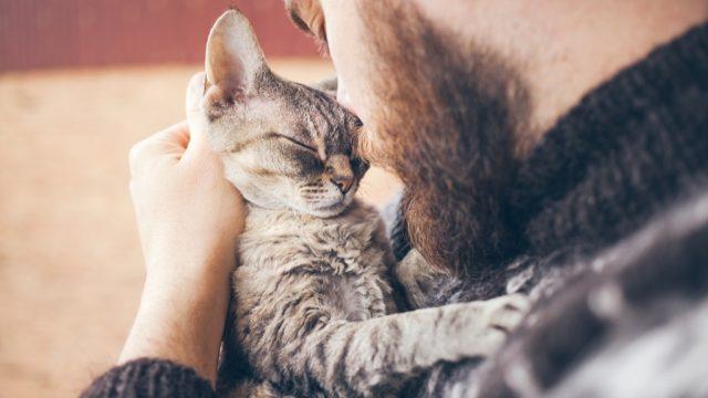 Man with kitten
