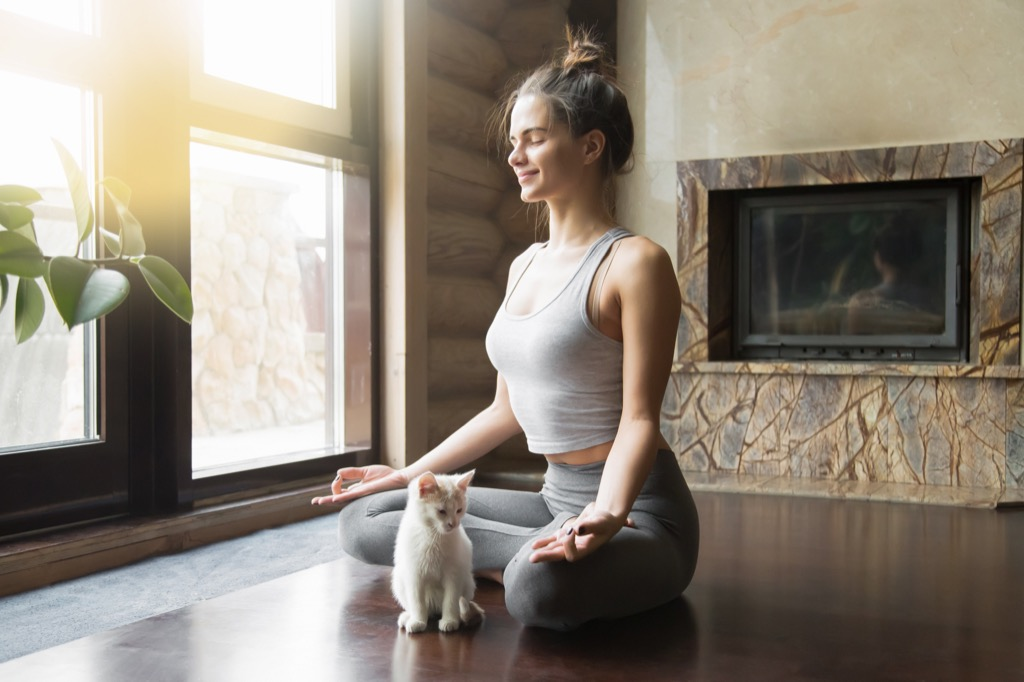 healthy cat and woman doing yoga meditation