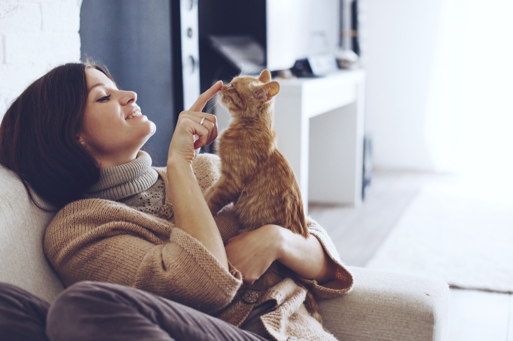 Cat Communicating to Owner