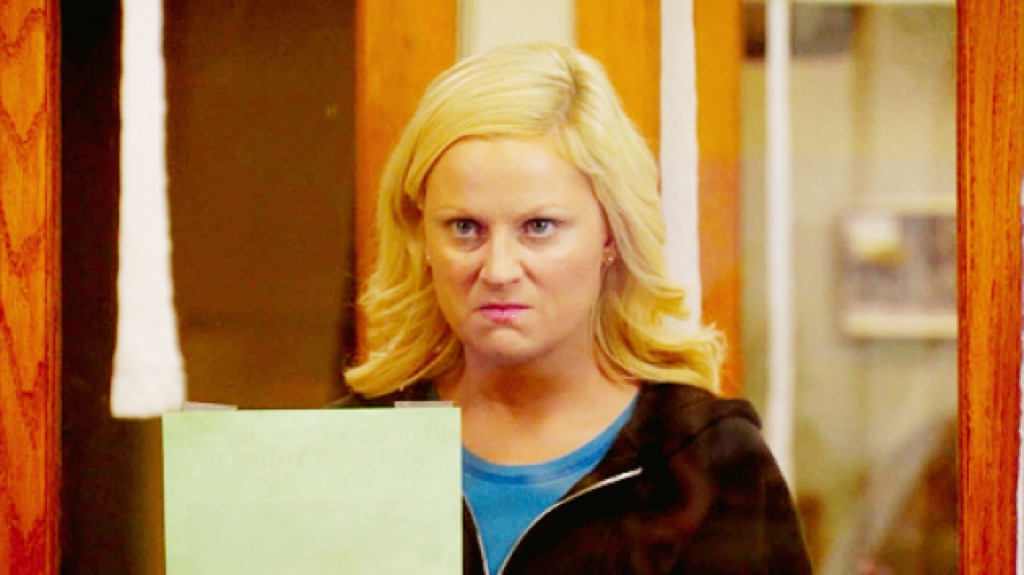 amy poehler in parks and recreation