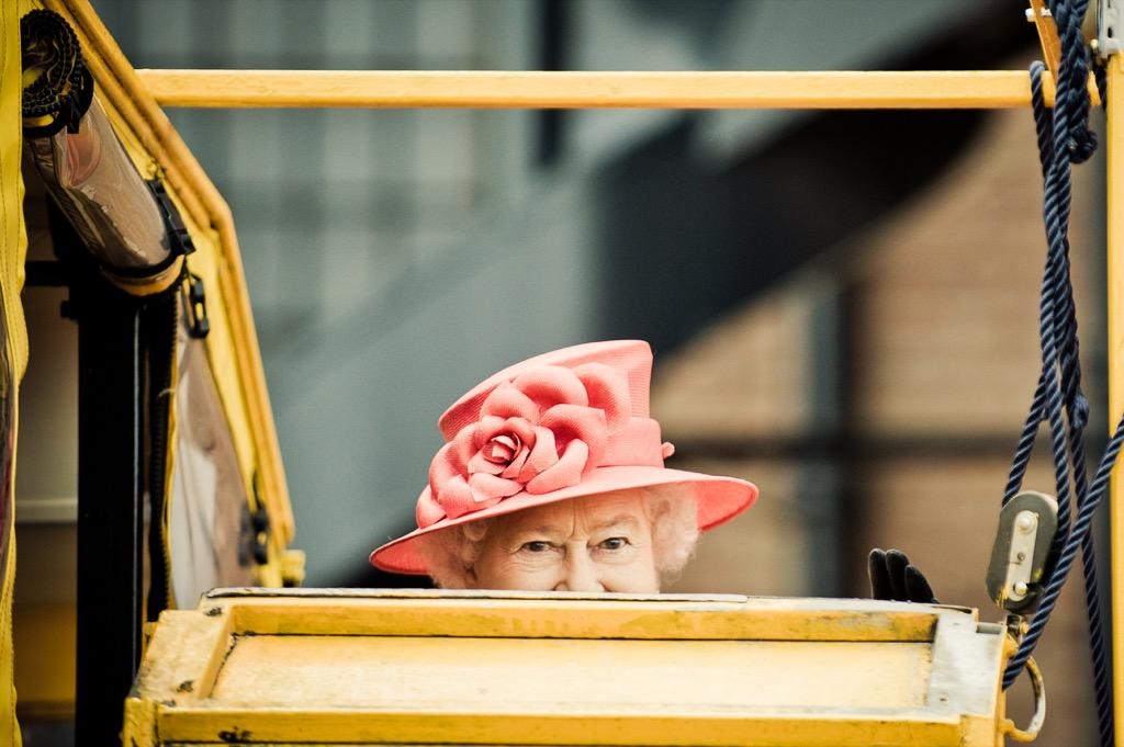 royal corgis queen elizabeth in a car