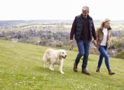 old couple walking dog, long marriage tips