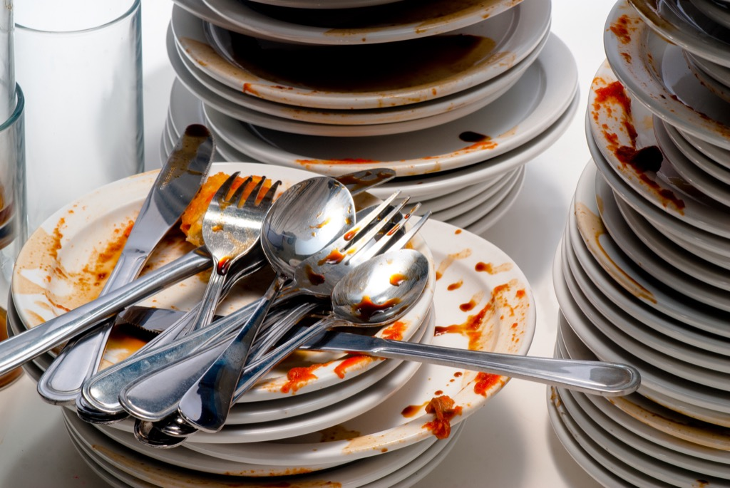 wet dishes things in your house attracting pests