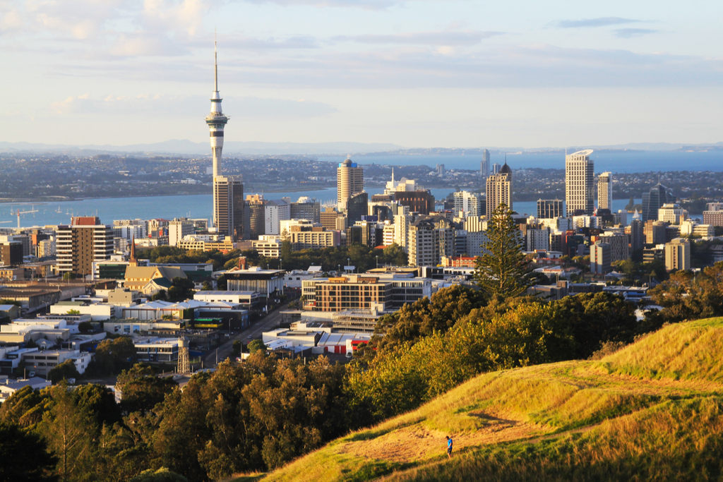 skyline view of auckland from a grassy hill