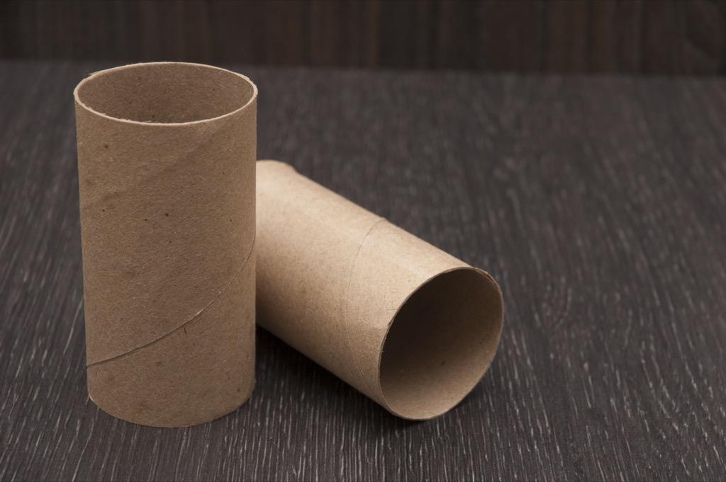 Toilet paper tube Organized