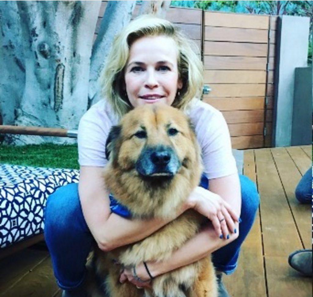 Chelsea Handler celebrities who look like their pets