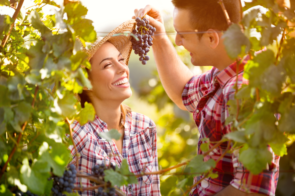 Couple Eating Concord Grapes Anti-Aging