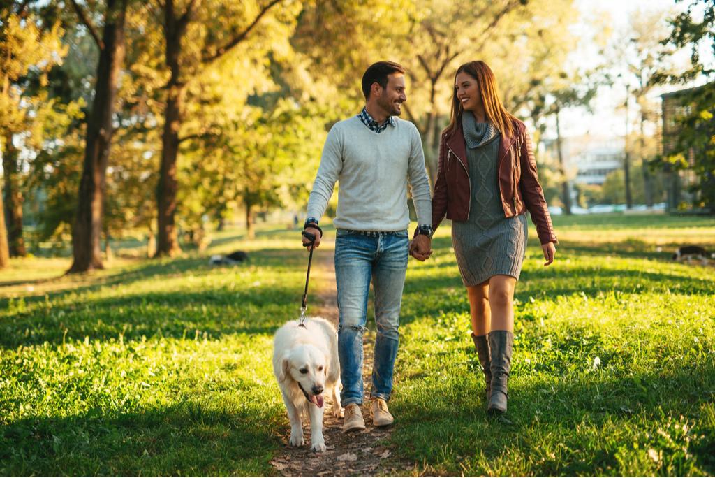 Couple Walking Dog Romance