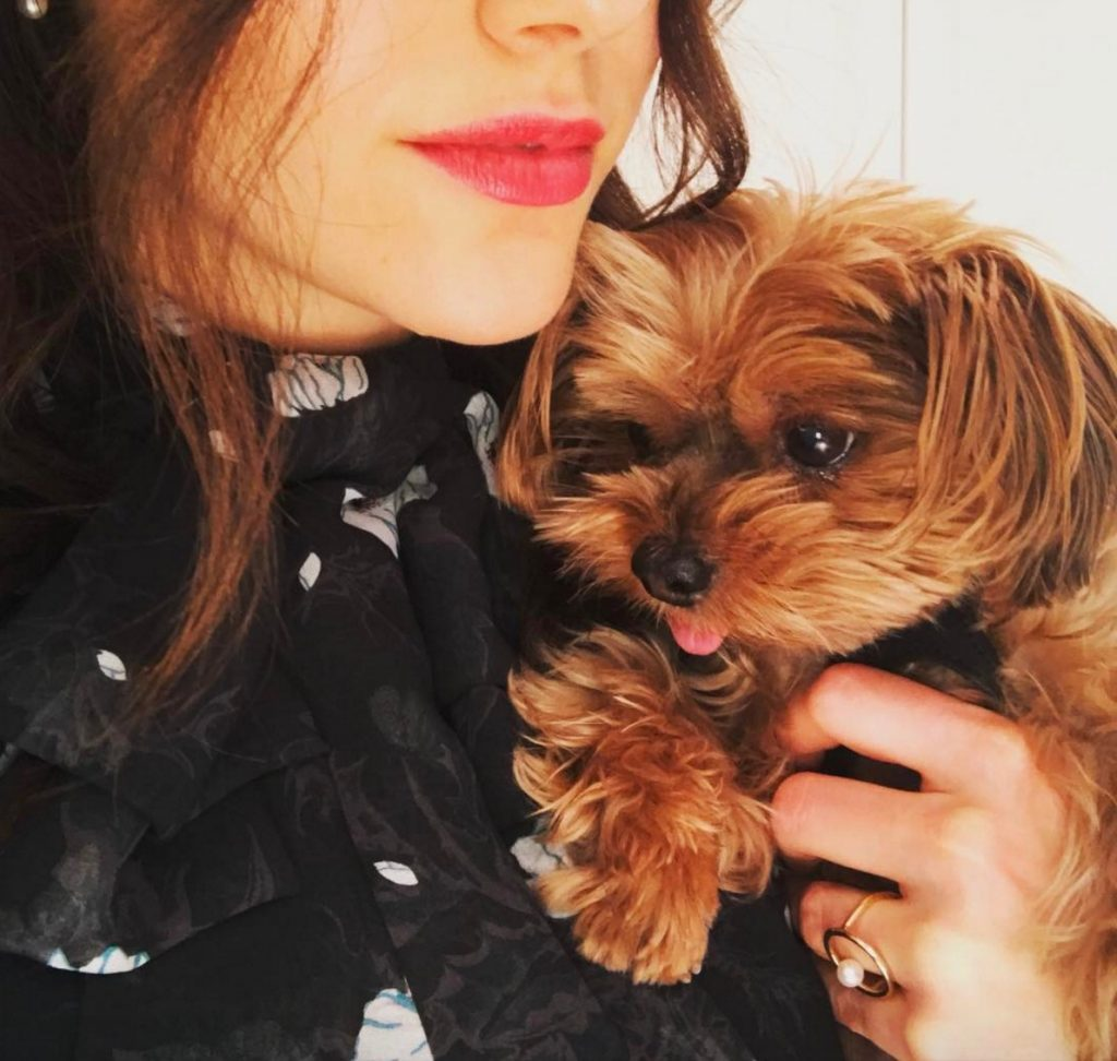 Emmy Rossum celebrities who look like their pets