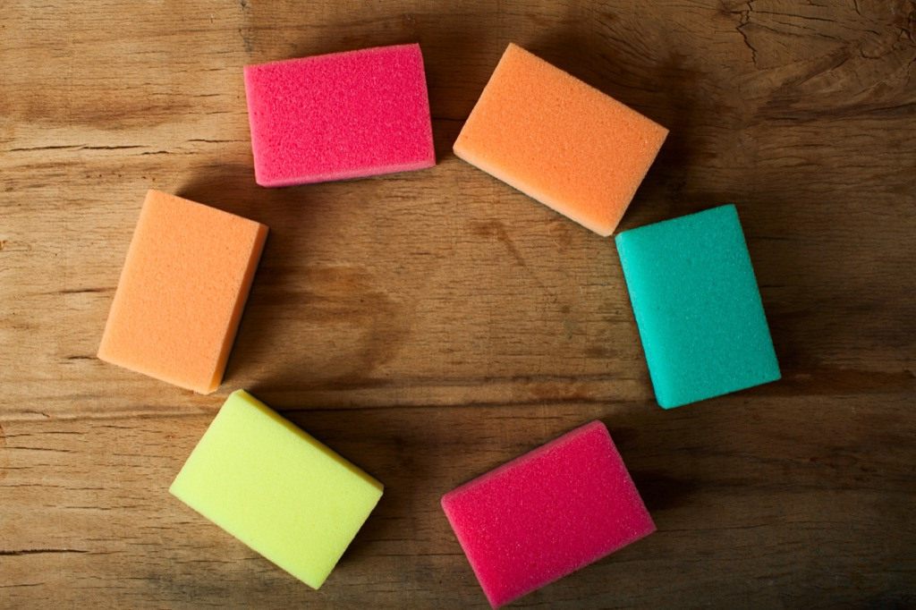 Sponges things you should clean every day