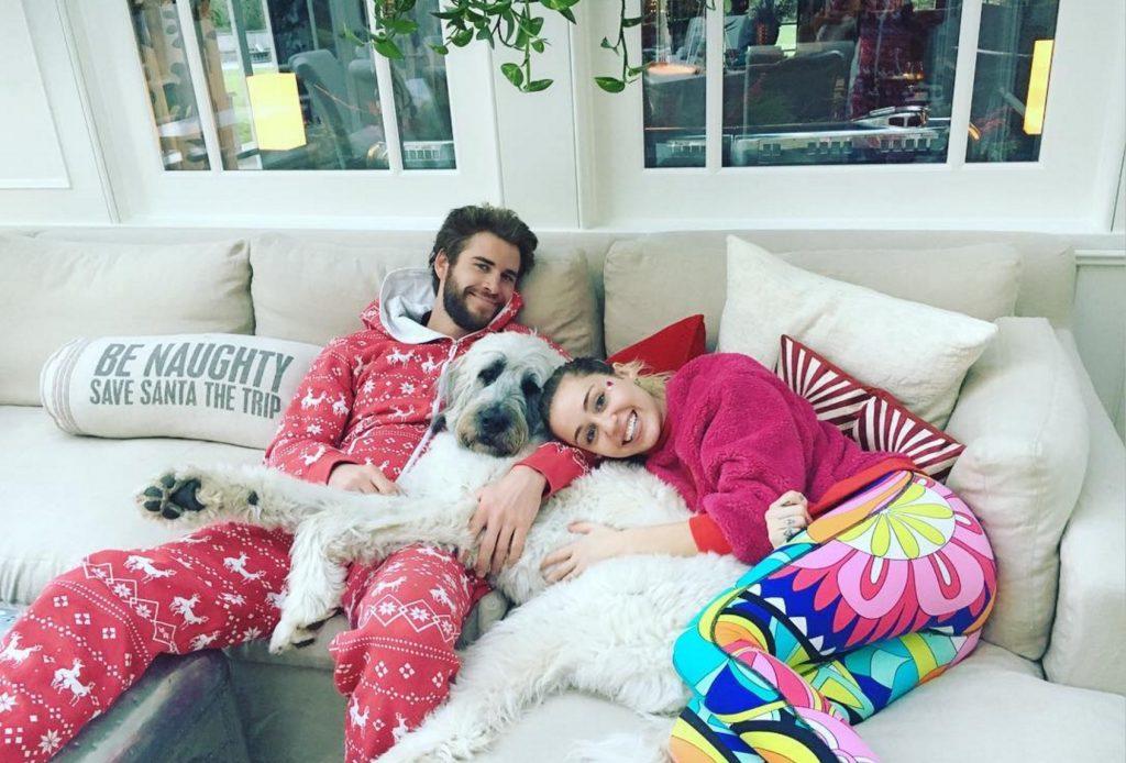 Liam Hemsworth celebrities who look like their pets