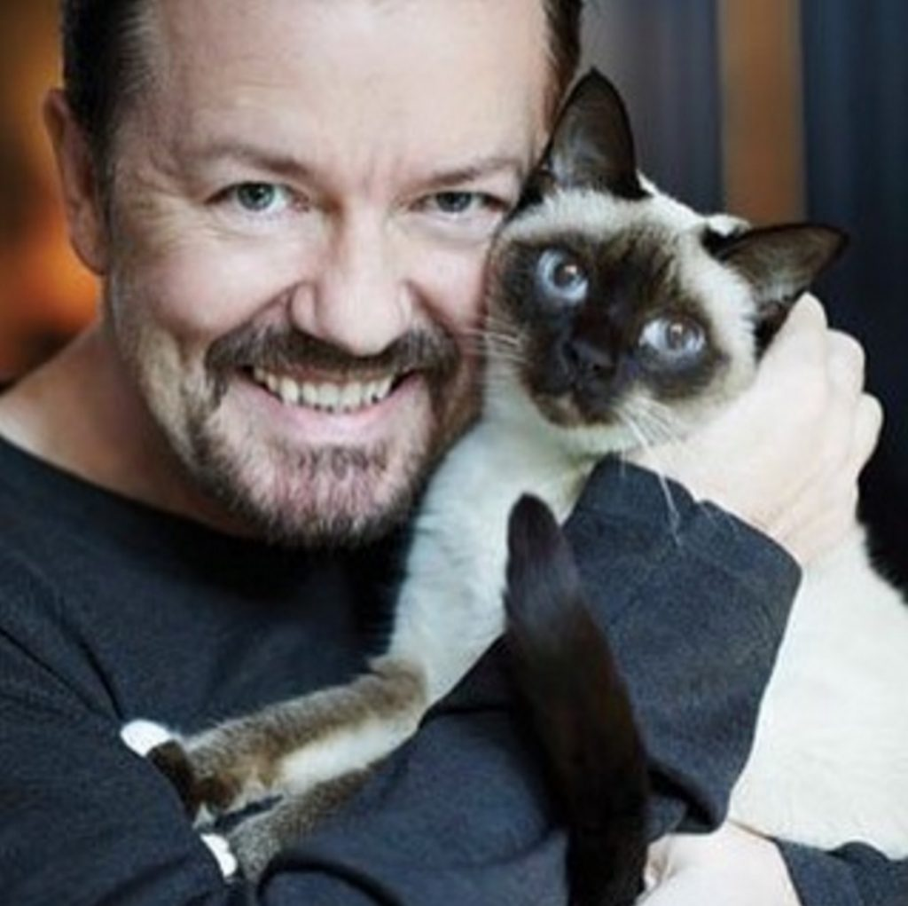 Ricky Gervais celebrities who look like their pets
