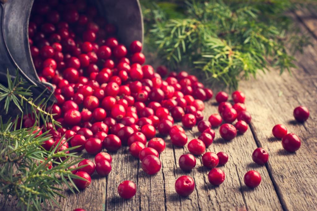 cranberries fruit berries