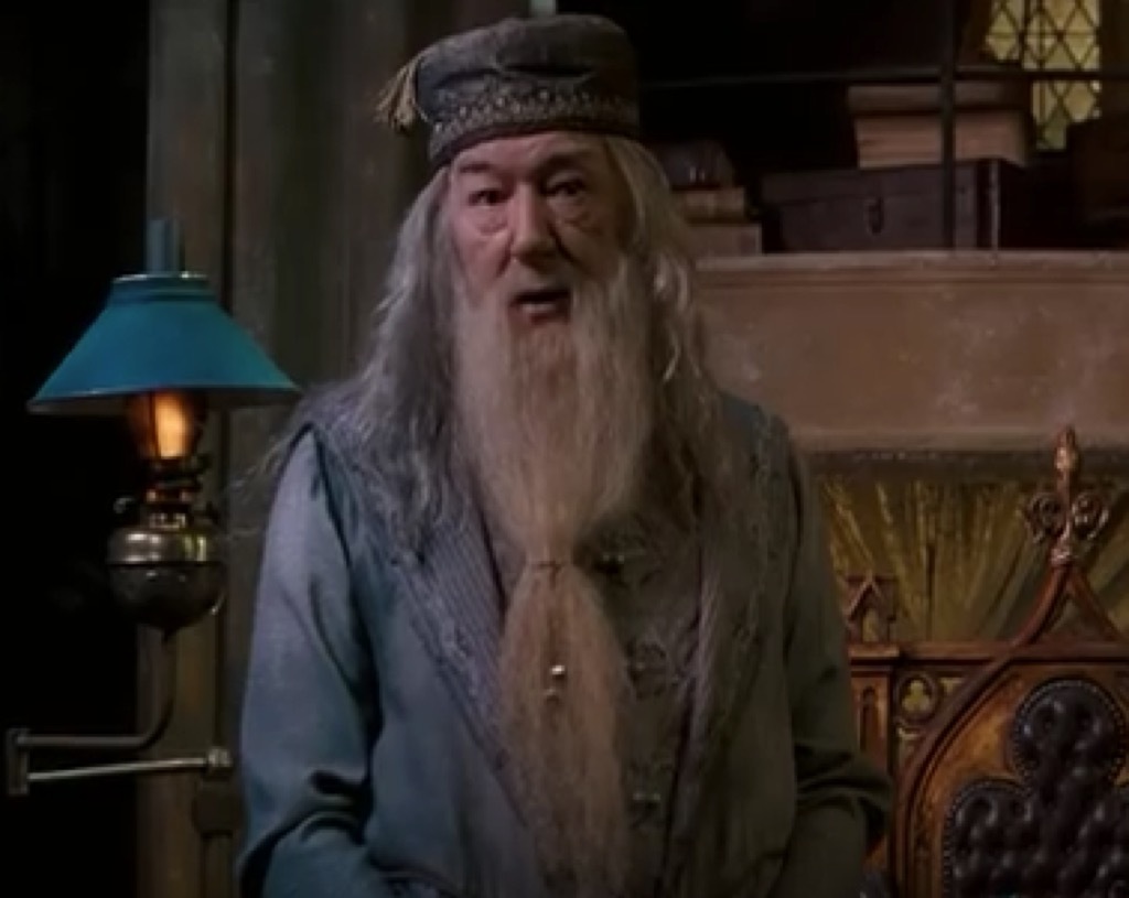 dumbledore got style