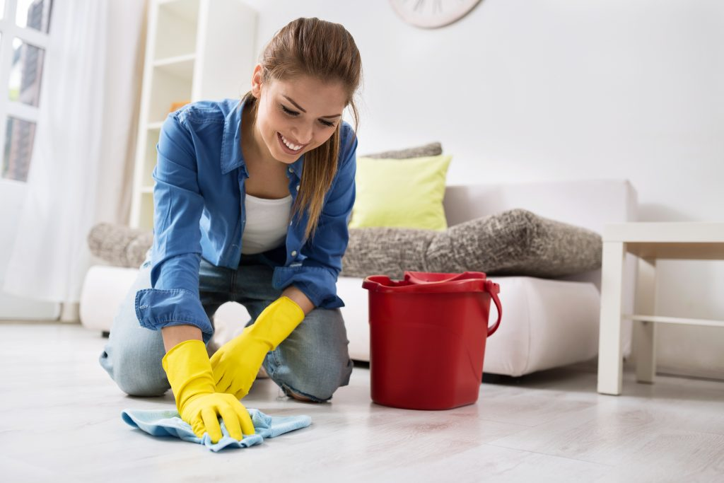 Woman Cleaning in Home