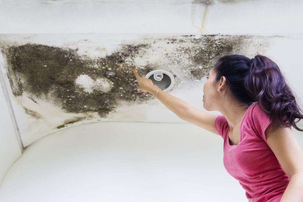 Woman Repairing Home