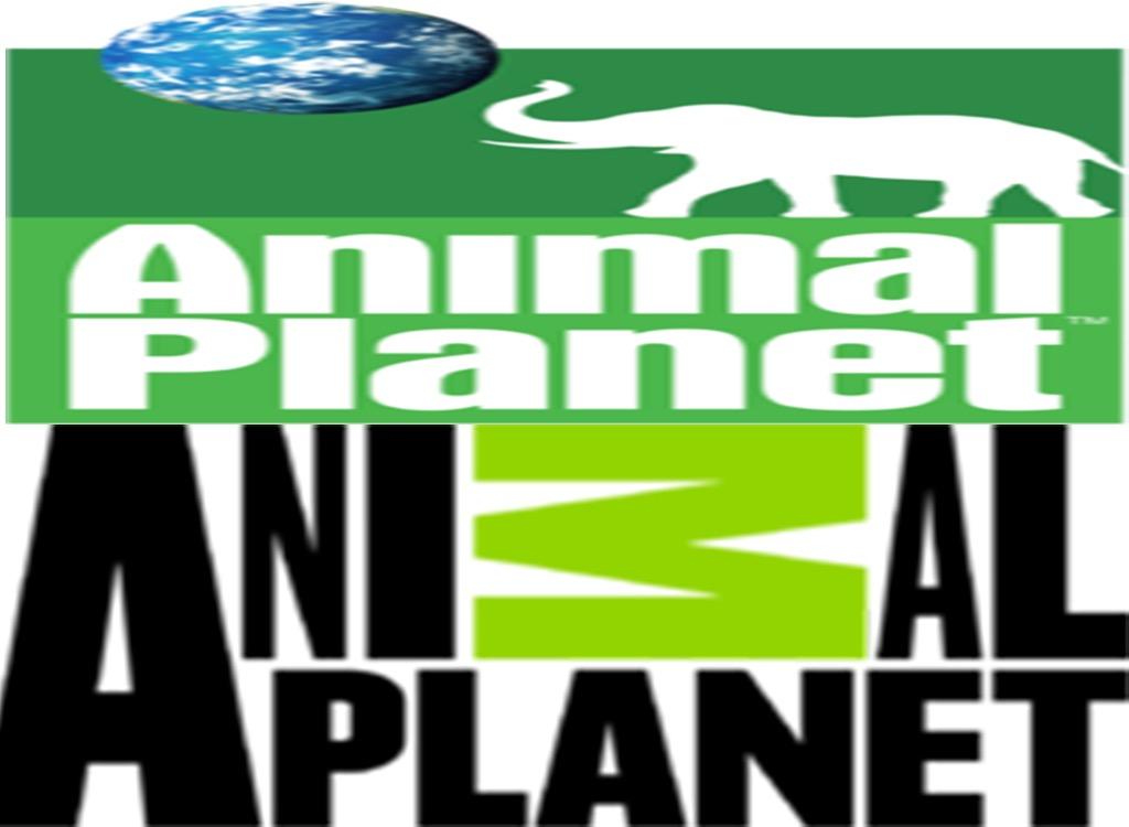 Animal Planet worst logo redesign