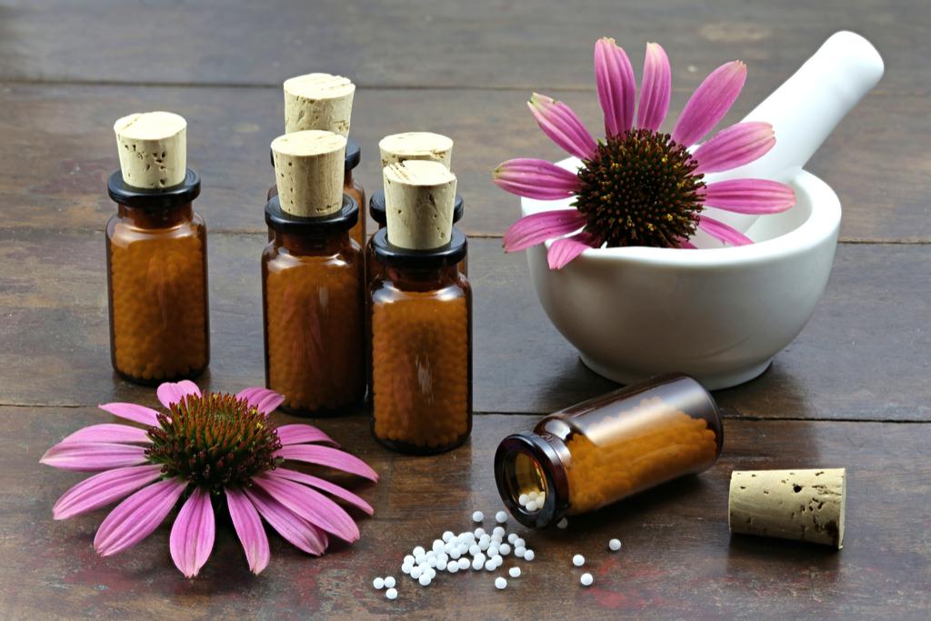 Echinacea Supplements Habits That Increase Flu Risk
