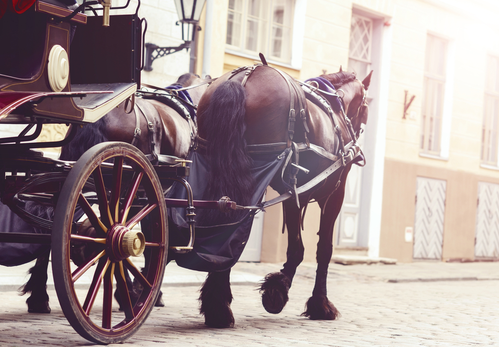 Horse Drawn Carriage Harry and Meghan's Wedding