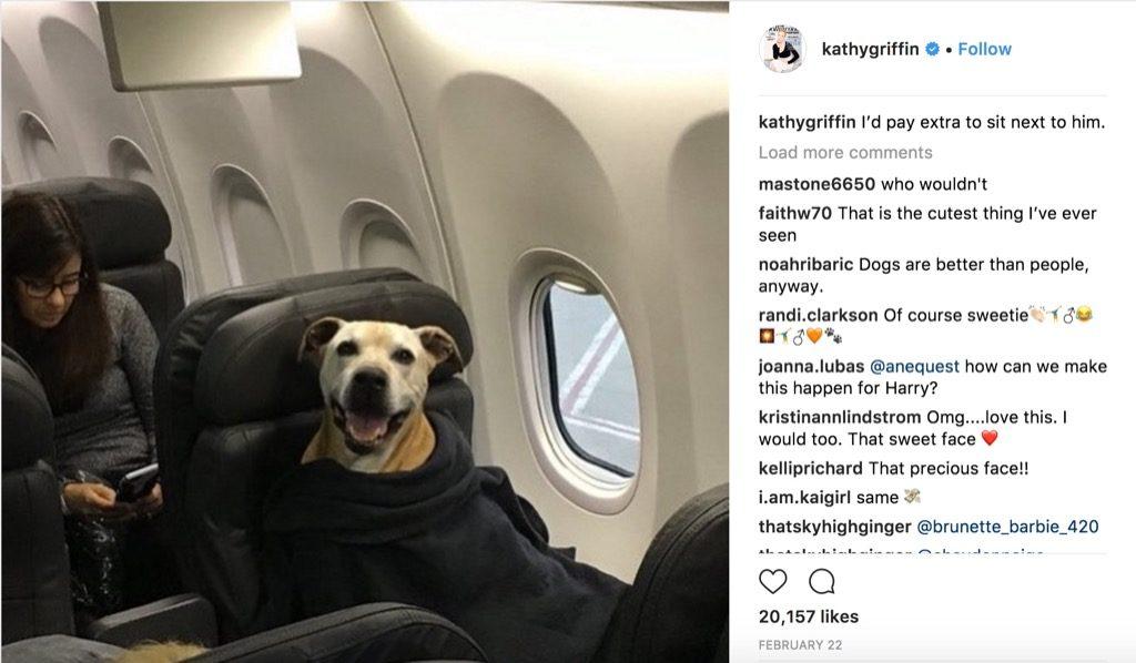 Kathy Griffin funniest celebrity photos