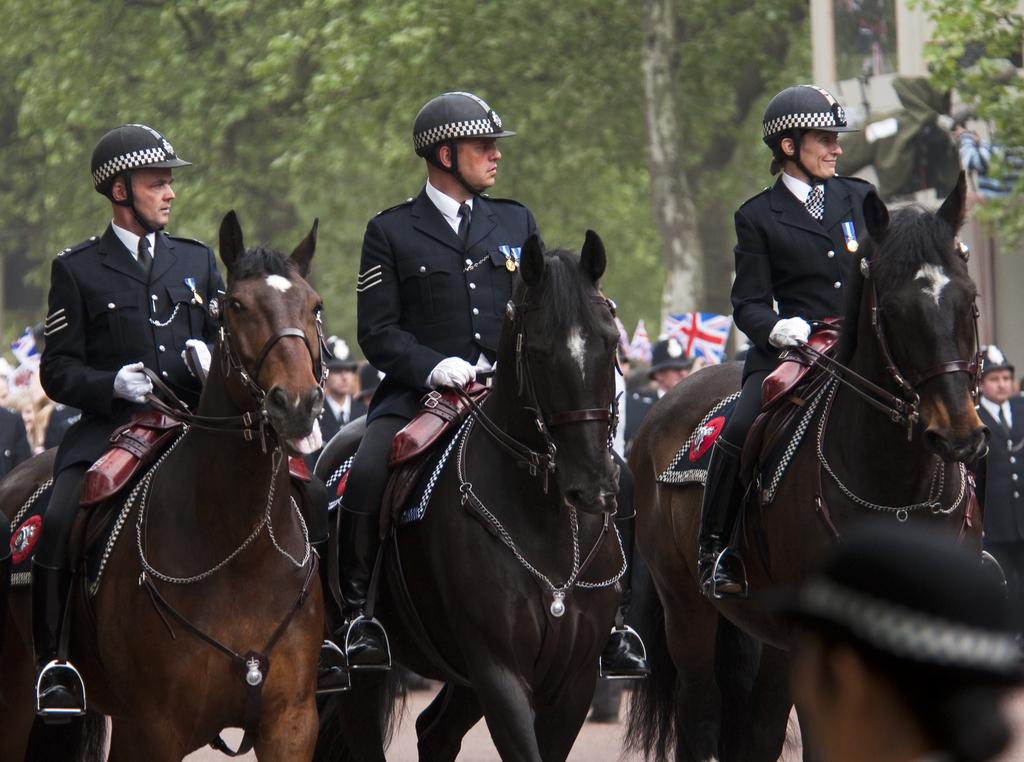 Royal Wedding Security Harry and Meghan's Wedding