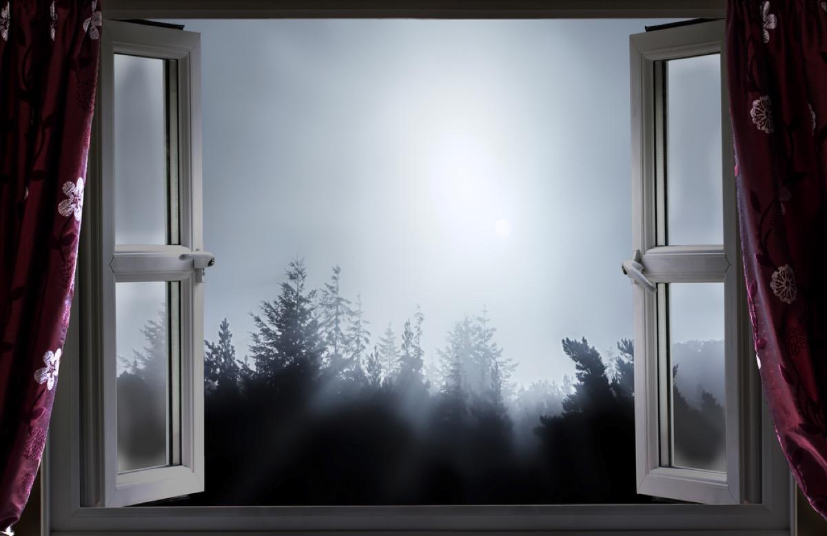window open at night looks outside