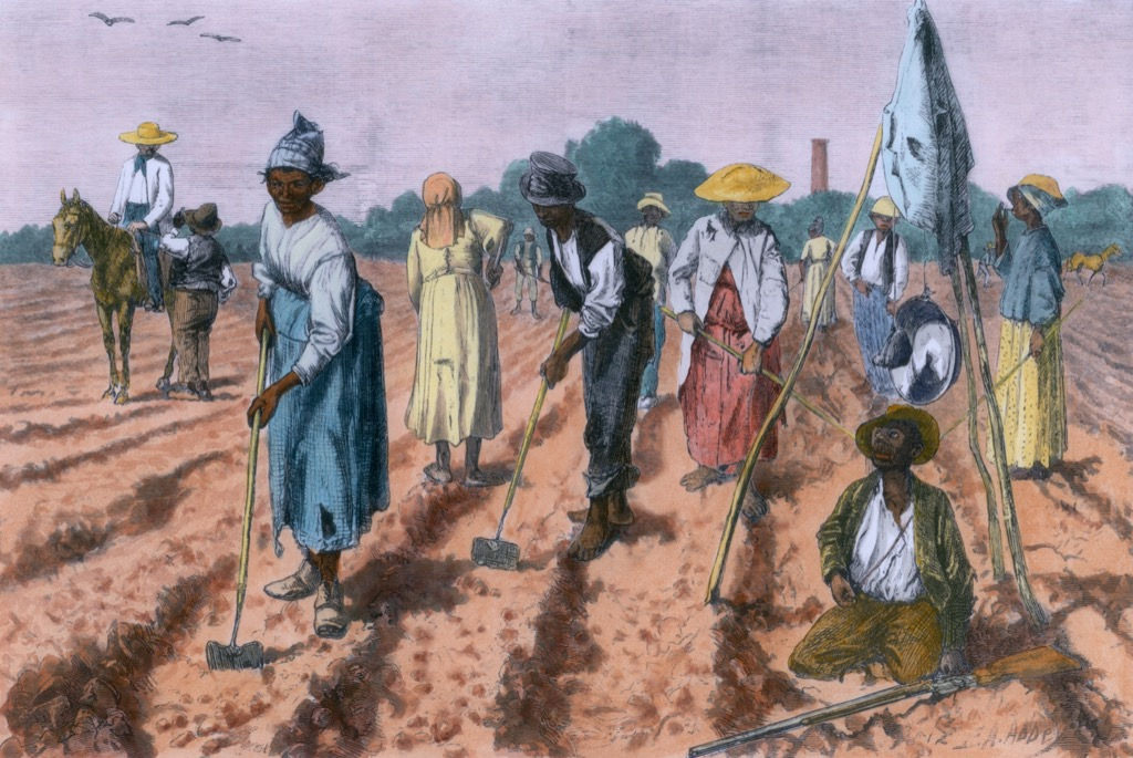 African American Slaves Working on Plantation School Lessons